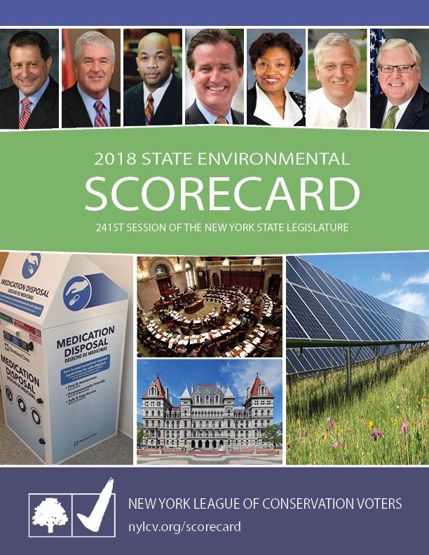 scorecard cover 2018